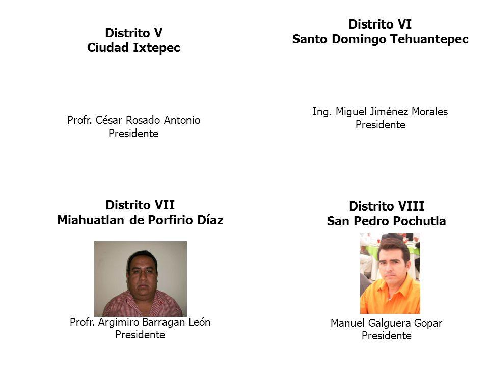 Santo Domingo Tehuantepec Miahuatlan de Porfirio Díaz