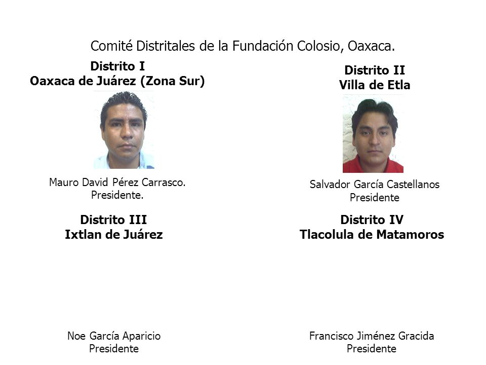Comité Distritales de la Fundación Colosio, Oaxaca.