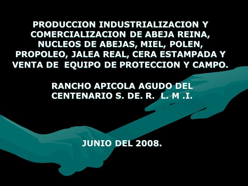 RANCHO APICOLA AGUDO DEL CENTENARIO S. DE. R. L. M .I. JUNIO DEL 2008.