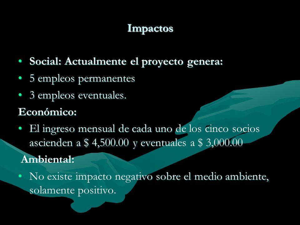 Impactos Social: Actualmente el proyecto genera: 5 empleos permanentes. 3 empleos eventuales. Económico: