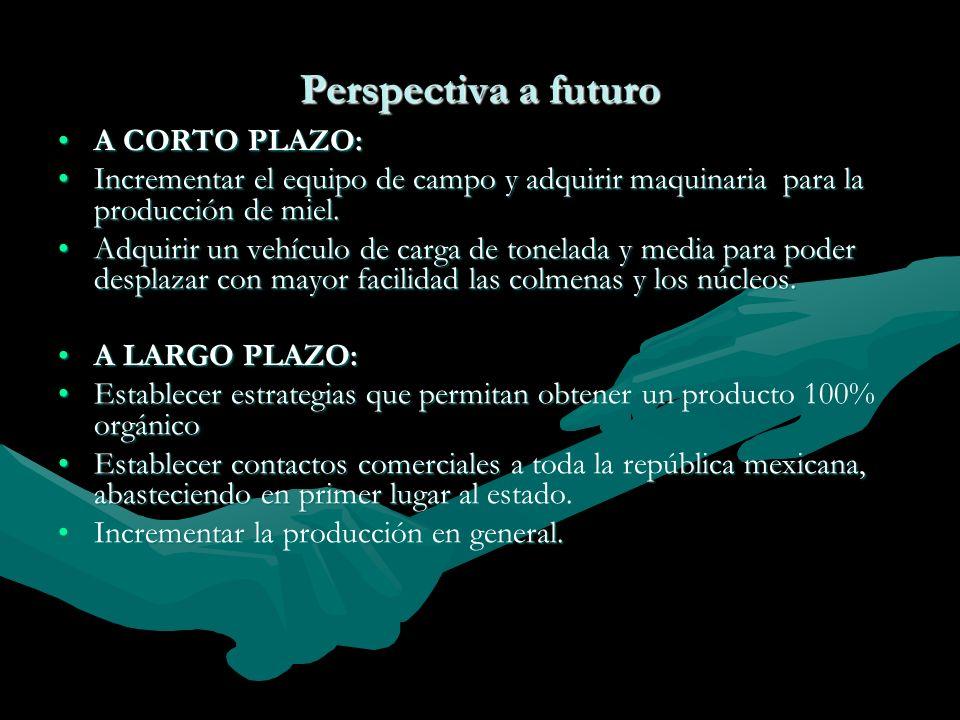 Perspectiva a futuro A CORTO PLAZO: