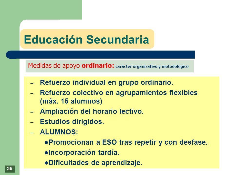 Educación Secundaria Refuerzo individual en grupo ordinario.