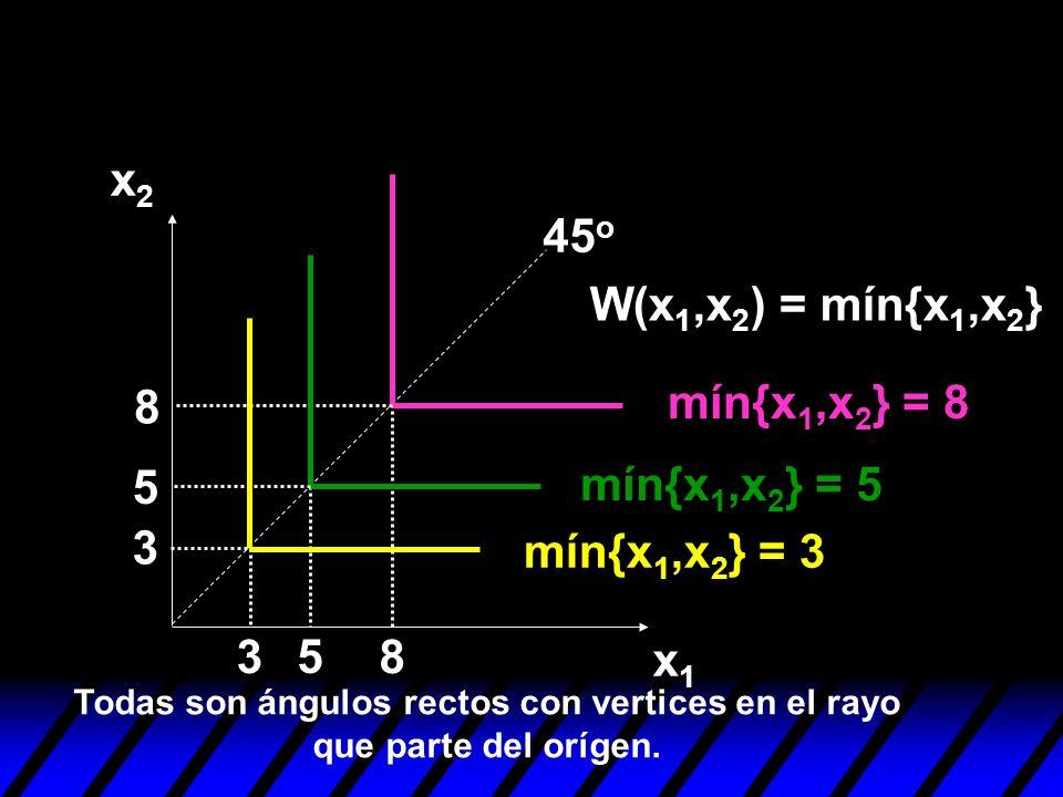 Todas son ángulos rectos con vertices en el rayo que parte del orígen.