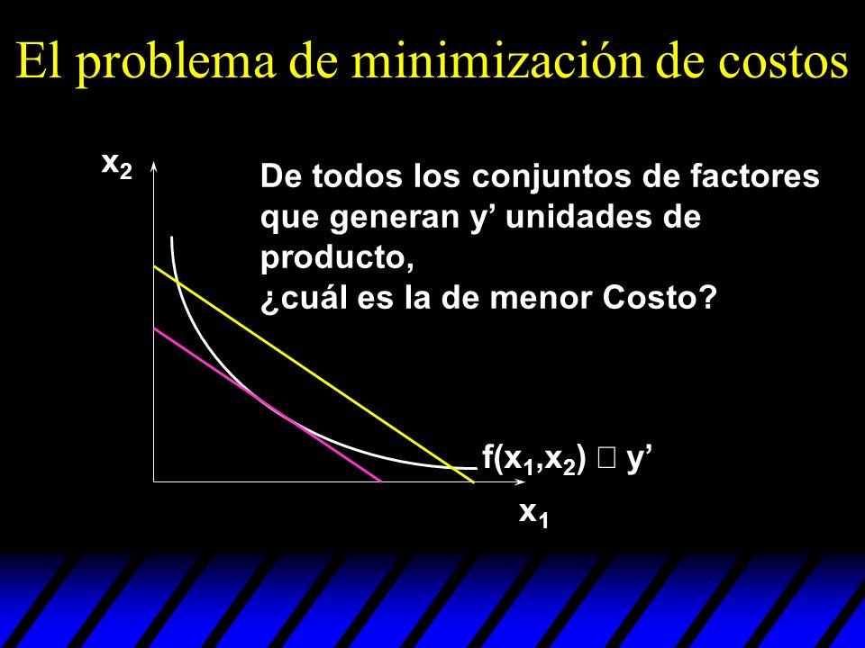 El problema de minimización de costos