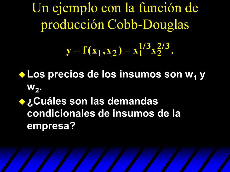 Un ejemplo con la función de producción Cobb-Douglas