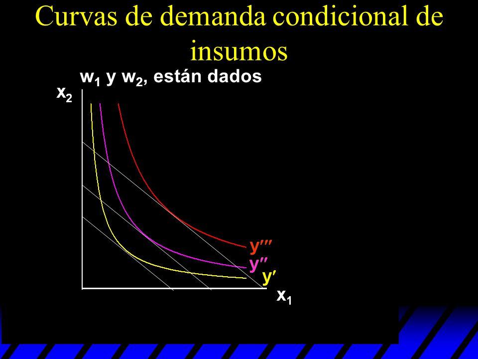 Curvas de demanda condicional de insumos