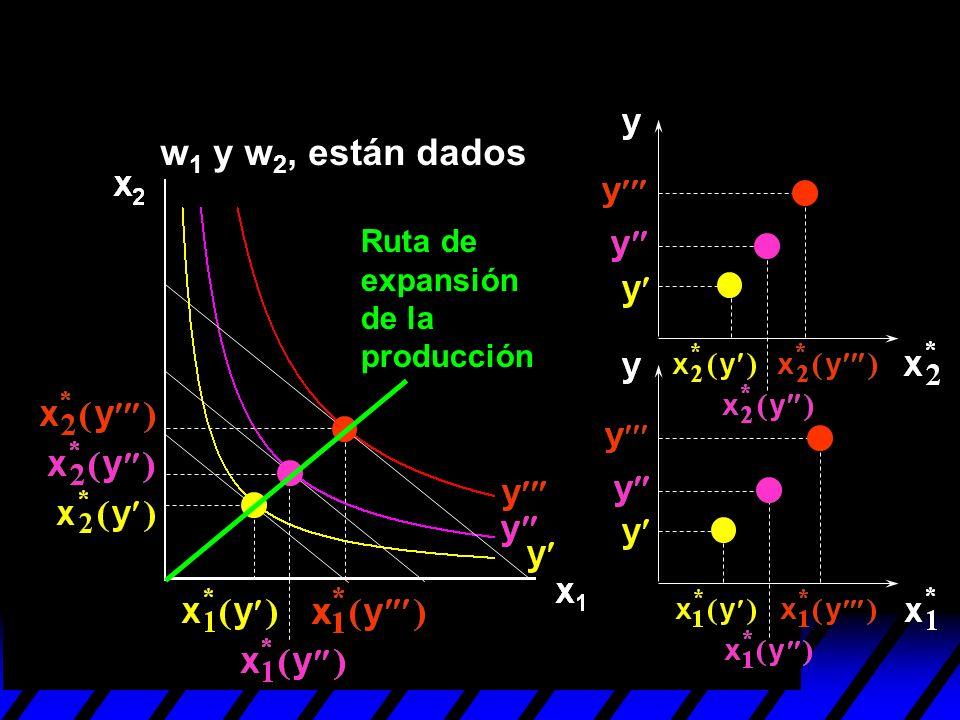 w1 y w2, están dados Ruta de expansión de la producción