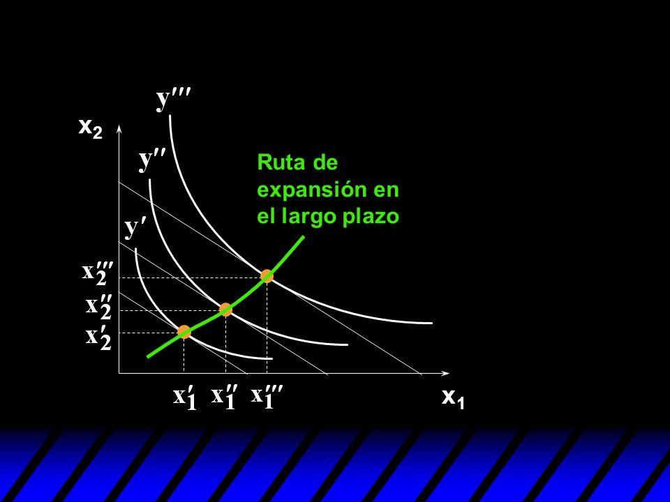 x2 Ruta de expansión en el largo plazo x1