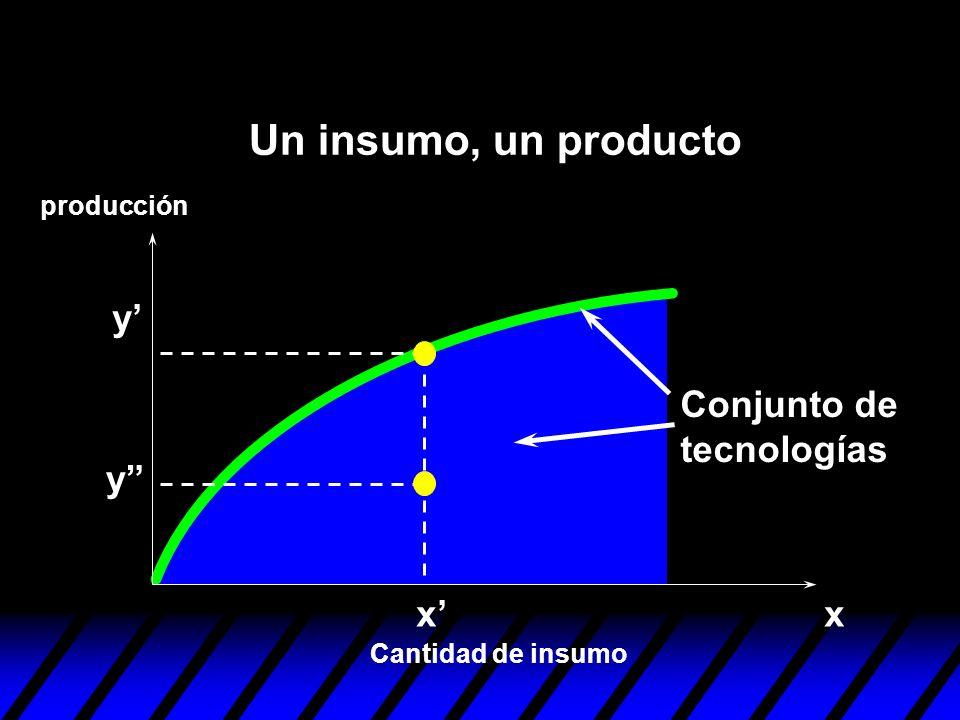Un insumo, un producto y' Conjunto de tecnologías y x' x producción