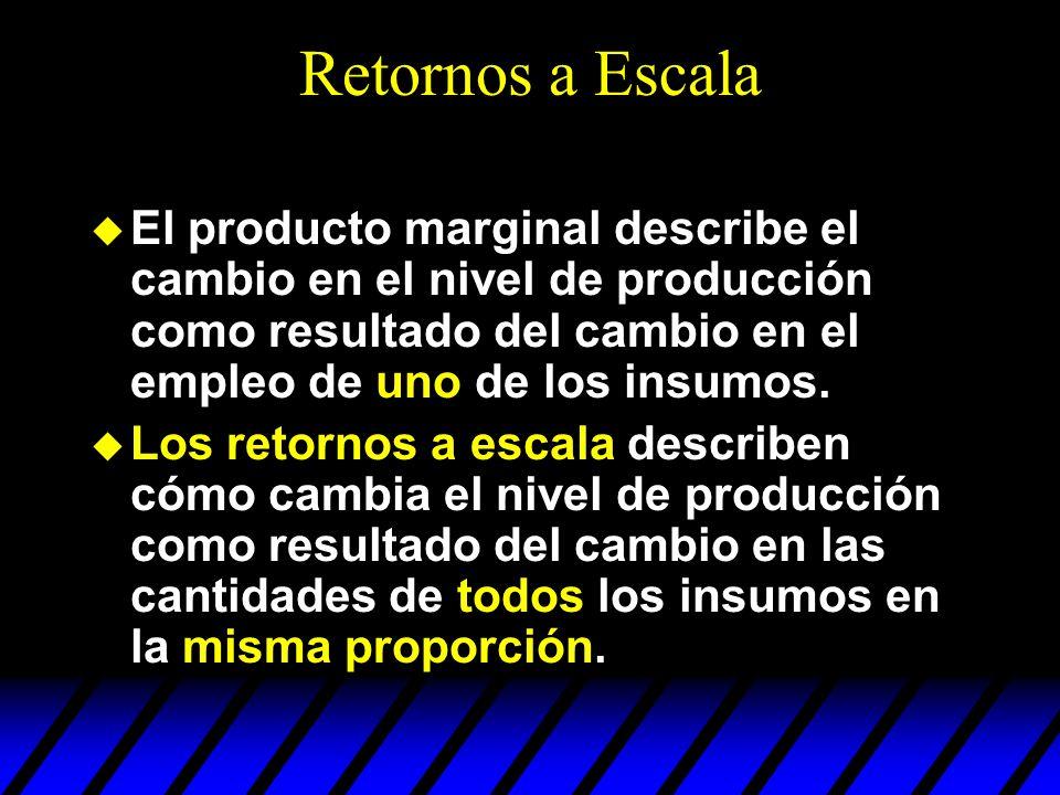 Retornos a Escala El producto marginal describe el cambio en el nivel de producción como resultado del cambio en el empleo de uno de los insumos.