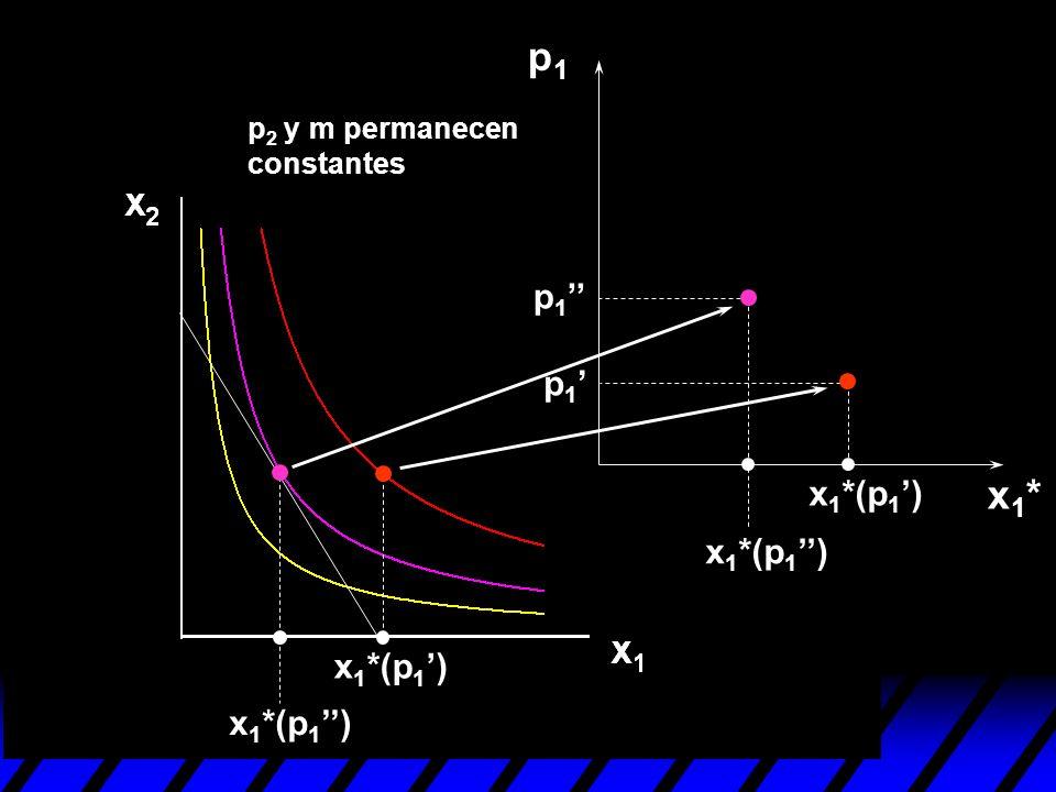 p1 x1* p1'' p1' x1*(p1') x1*(p1'') x1*(p1') x1*(p1'')