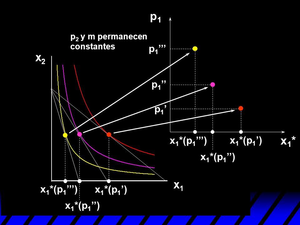 p1 x1* p1''' p1'' p1' x1*(p1''') x1*(p1') x1*(p1'') x1*(p1''')