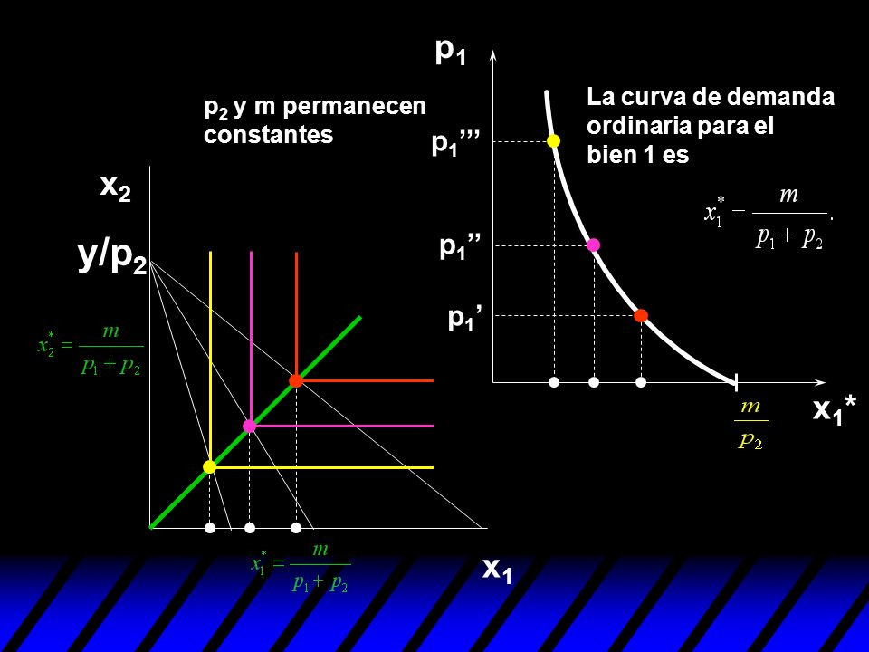 p1 La curva de demanda ordinaria para el bien 1 es. p2 y m permanecen constantes. p1''' x2. y/p2.