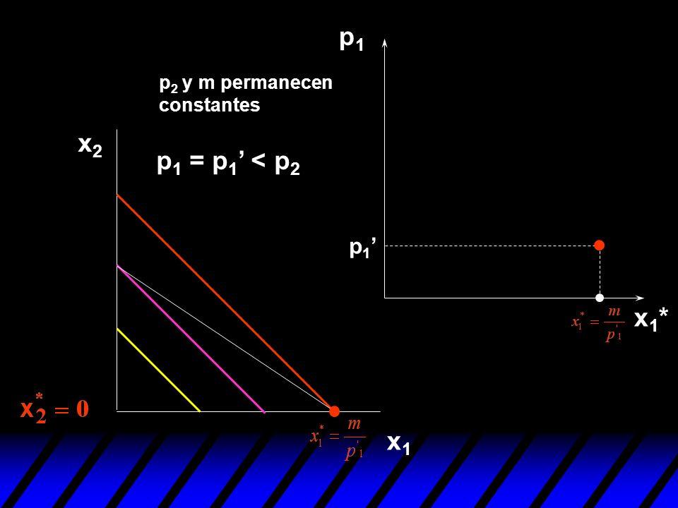 p1 p2 y m permanecen constantes x2 p1 = p1' < p2 p1' x1* x1