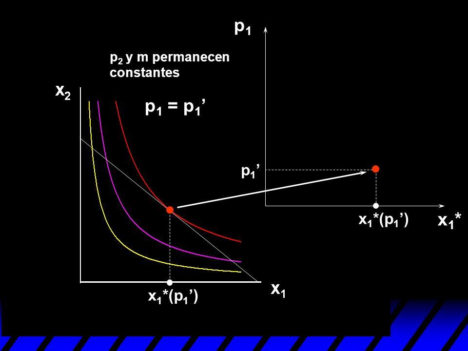 p1 p2 y m permanecen constantes p1 = p1' p1' x1*(p1') x1* x1*(p1')