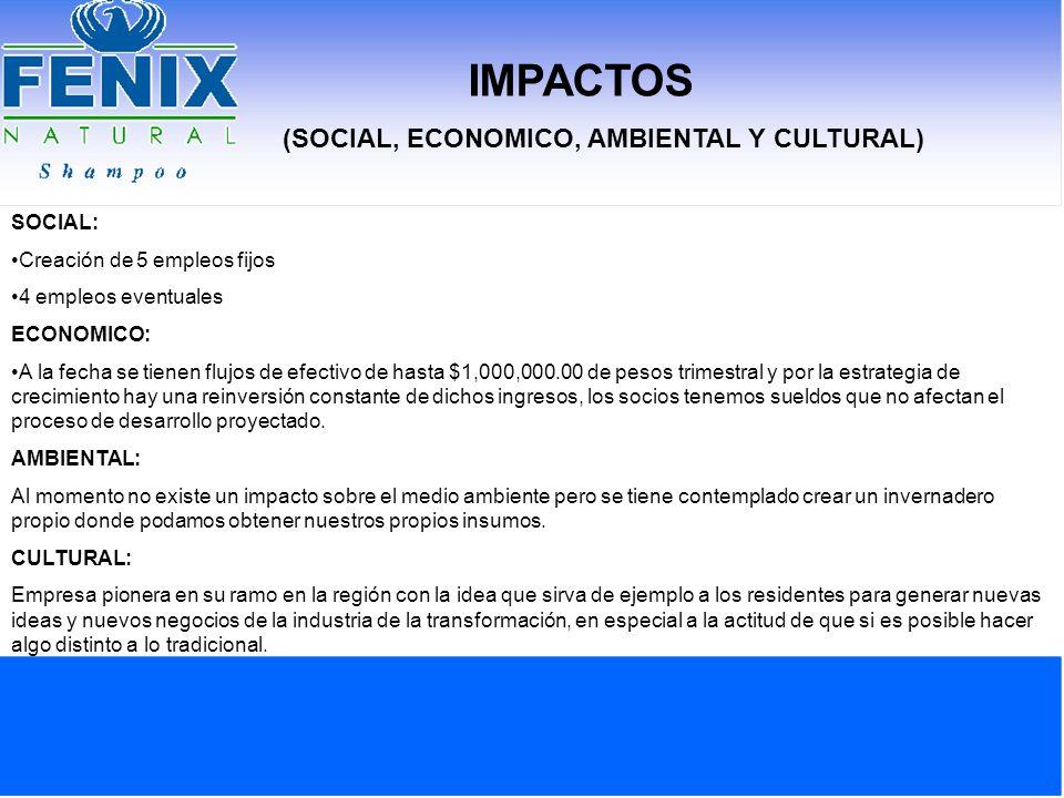 IMPACTOS (SOCIAL, ECONOMICO, AMBIENTAL Y CULTURAL) SOCIAL: