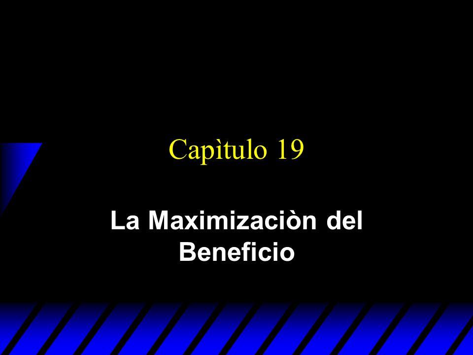 La Maximizaciòn del Beneficio