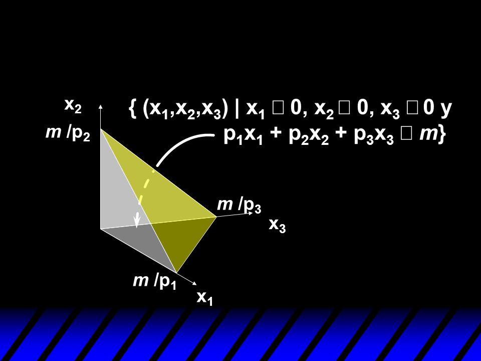{ (x1,x2,x3) | x1 ³ 0, x2 ³ 0, x3 ³ 0 y p1x1 + p2x2 + p3x3 £ m} x2