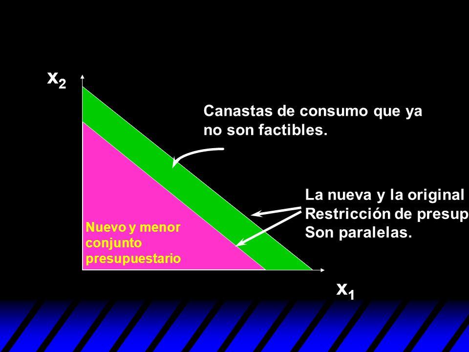 x2 x1 Canastas de consumo que ya no son factibles.