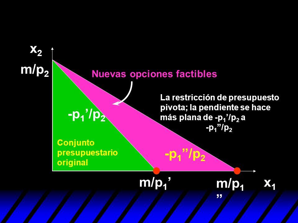 x2 m/p2 -p1'/p2 -p1 /p2 m/p1' m/p1 x1 Nuevas opciones factibles
