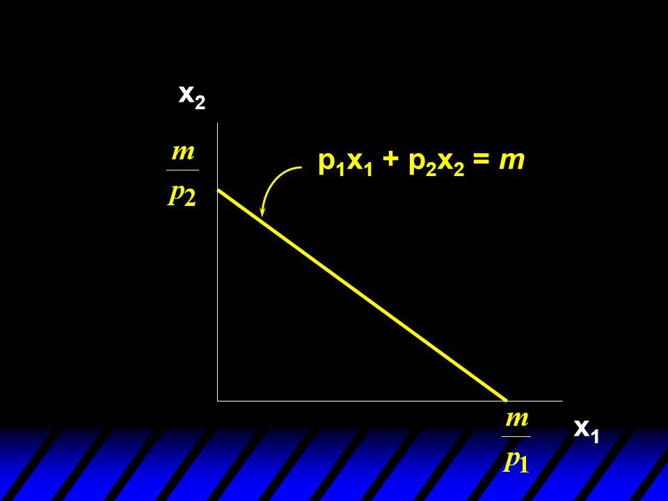 x2 p1x1 + p2x2 = m x1