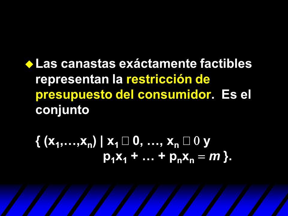 Las canastas exáctamente factibles representan la restricción de presupuesto del consumidor.