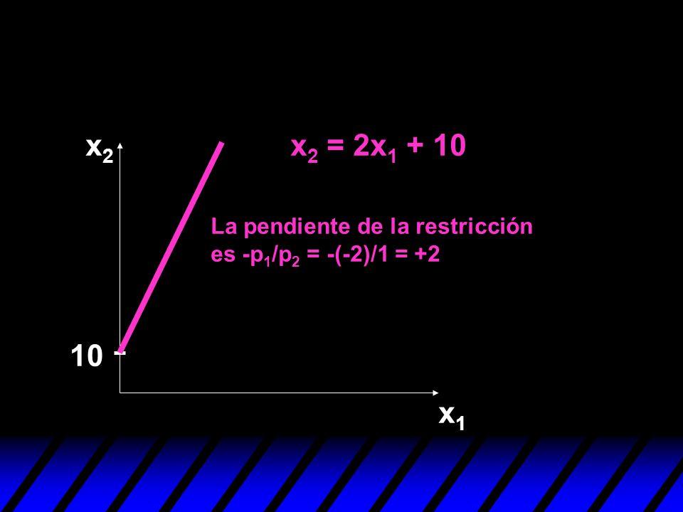 x2 x2 = 2x1 + 10 10 x1 La pendiente de la restricción