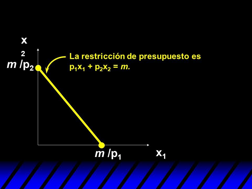 x2 La restricción de presupuesto es p1x1 + p2x2 = m. m /p2 m /p1 x1
