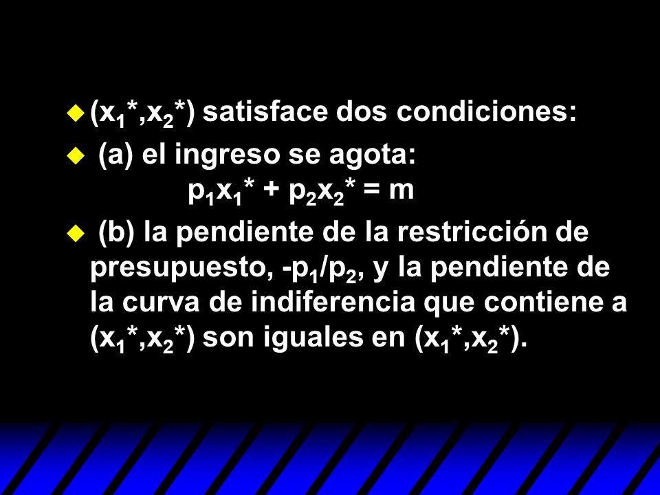 (x1*,x2*) satisface dos condiciones: