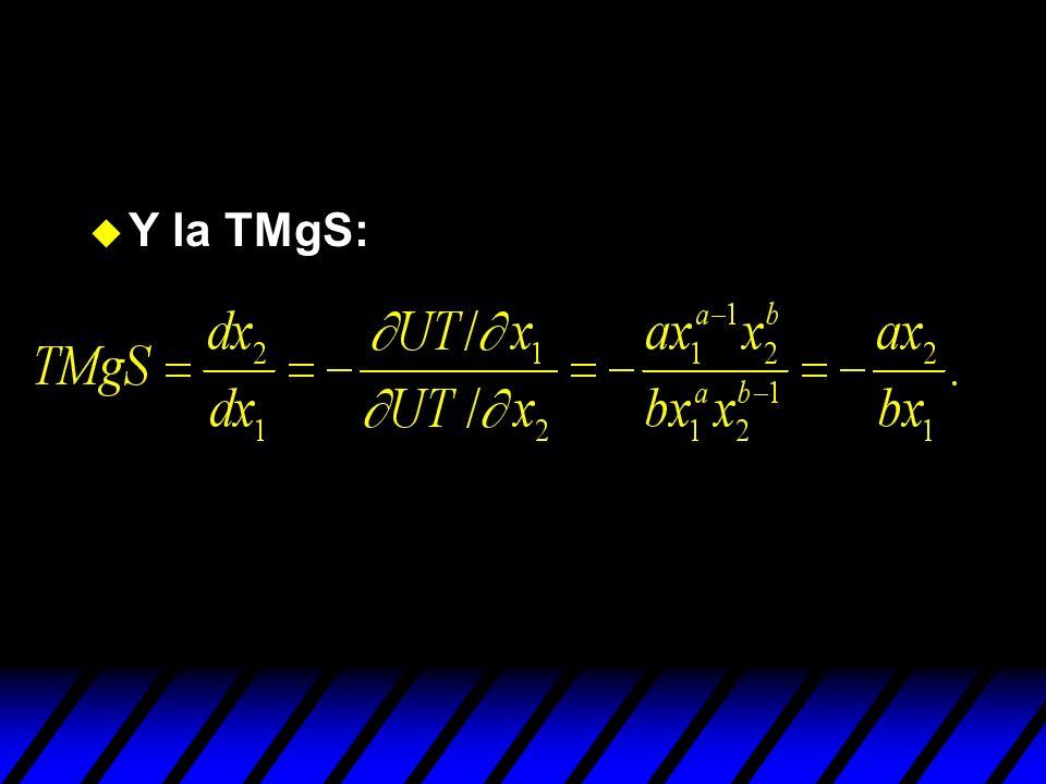 Y la TMgS: