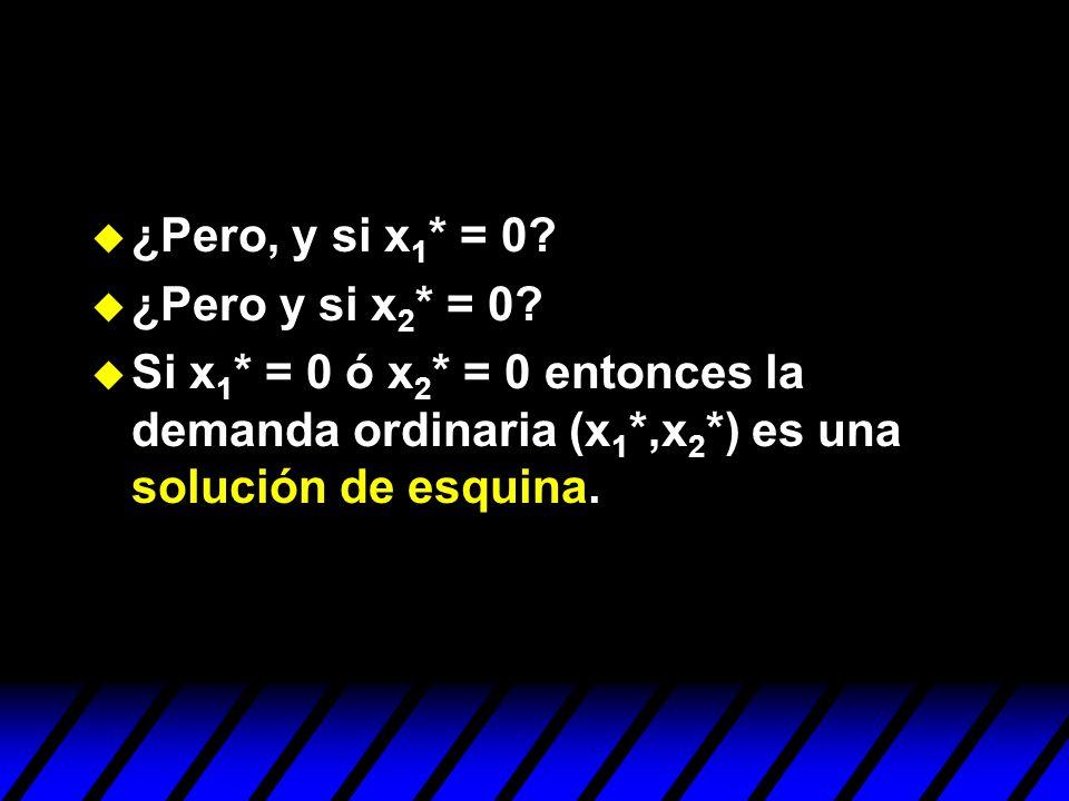 ¿Pero, y si x1* = 0. ¿Pero y si x2* = 0.