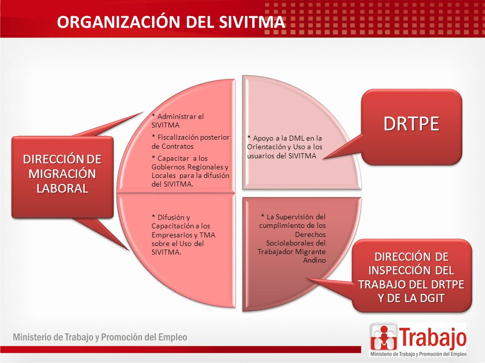 DRTPE ORGANIZACIÓN DEL SIVITMA