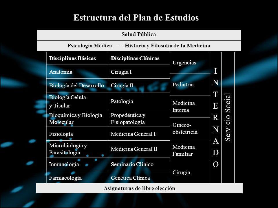 Estructura del Plan de Estudios
