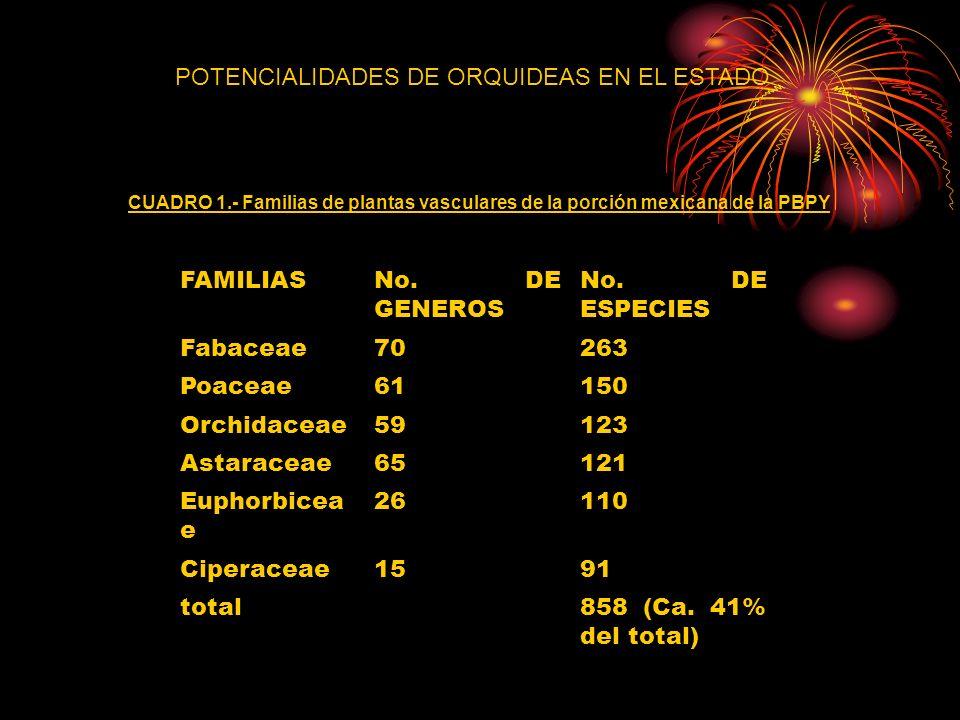 POTENCIALIDADES DE ORQUIDEAS EN EL ESTADO