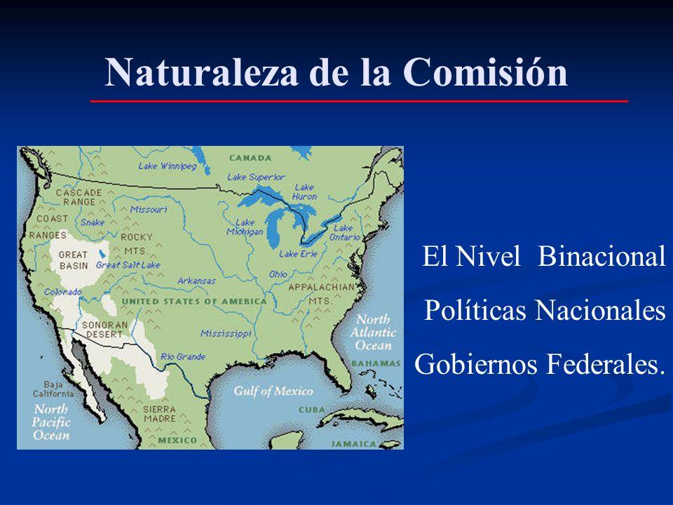 Naturaleza de la Comisión