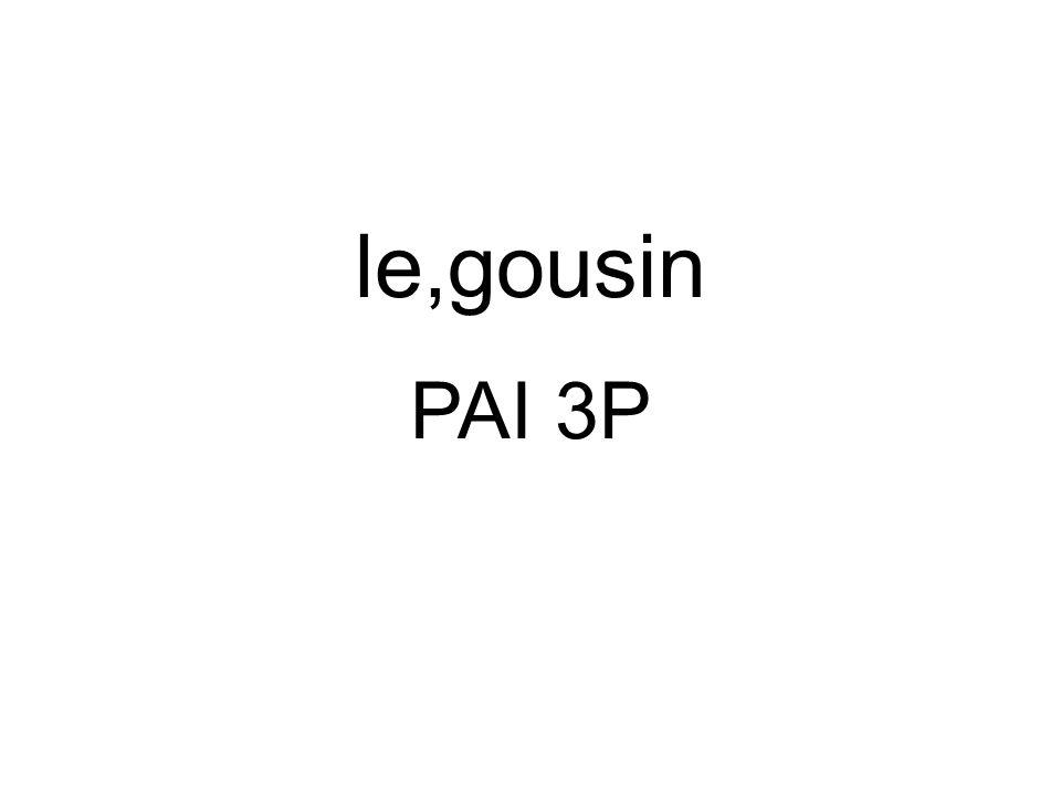 le,gousin PAI 3P