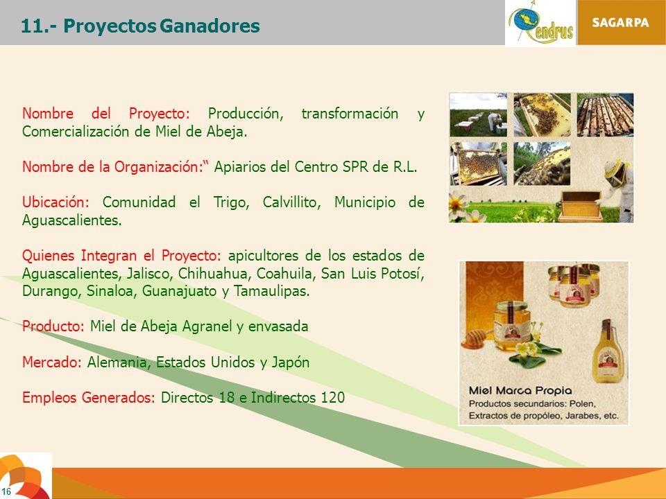 11.- Proyectos Ganadores Nombre del Proyecto: Producción, transformación y Comercialización de Miel de Abeja.