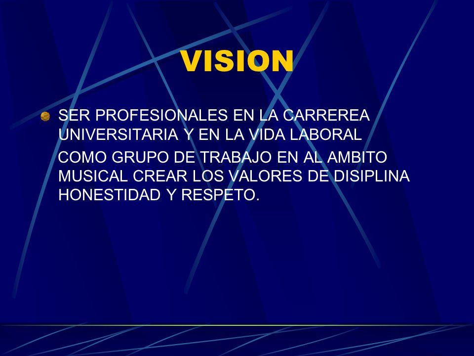VISION SER PROFESIONALES EN LA CARREREA UNIVERSITARIA Y EN LA VIDA LABORAL.