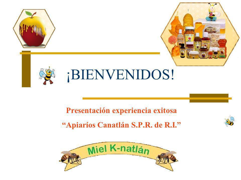 Presentación experiencia exitosa Apiaríos Canatlán S.P.R. de R.I.