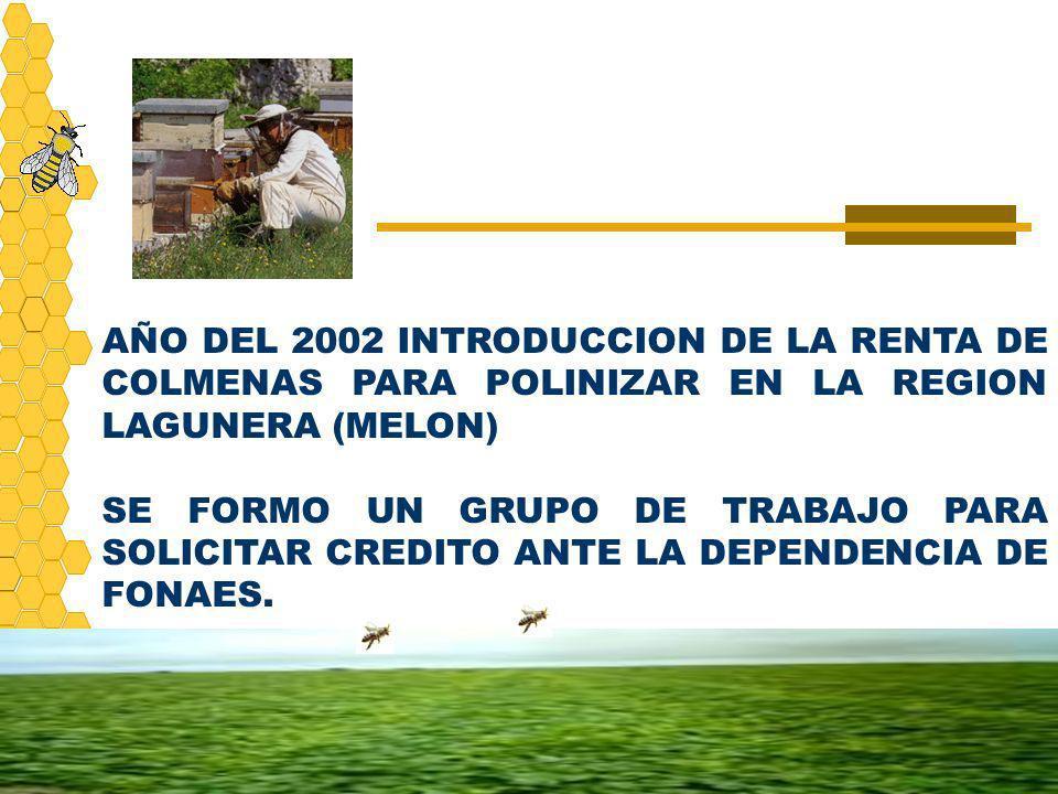 AÑO DEL 2002 INTRODUCCION DE LA RENTA DE COLMENAS PARA POLINIZAR EN LA REGION LAGUNERA (MELON)