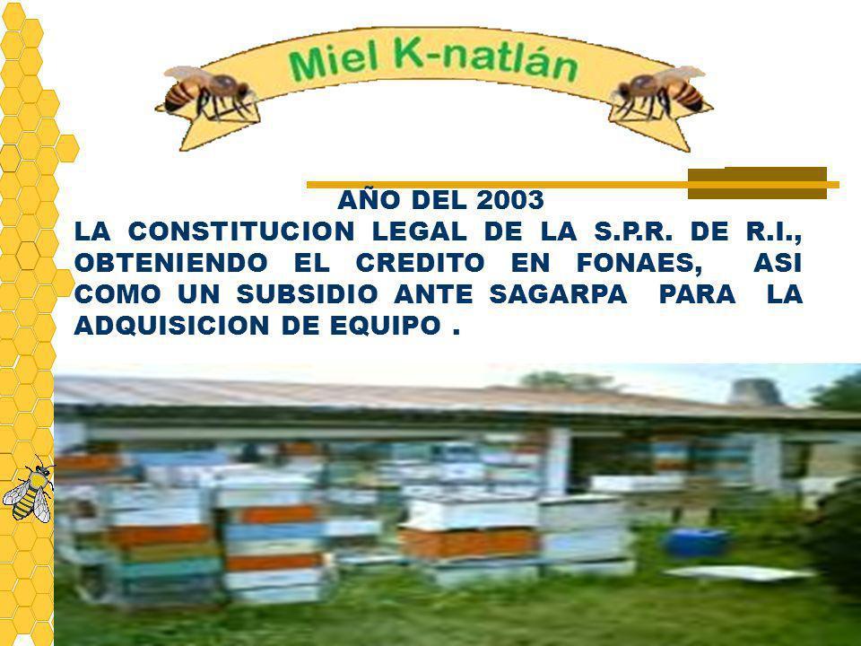 AÑO DEL 2003