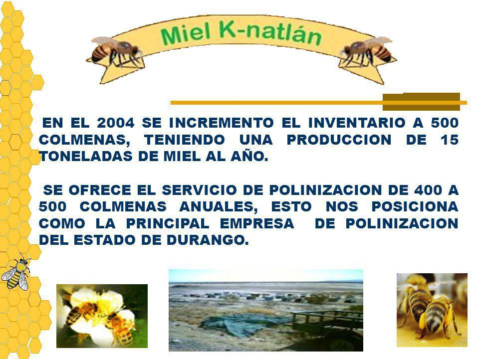 EN EL 2004 SE INCREMENTO EL INVENTARIO A 500 COLMENAS, TENIENDO UNA PRODUCCION DE 15 TONELADAS DE MIEL AL AÑO.