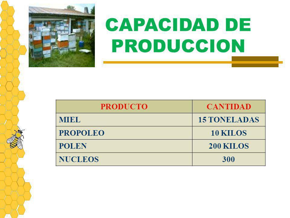 CAPACIDAD DE PRODUCCION