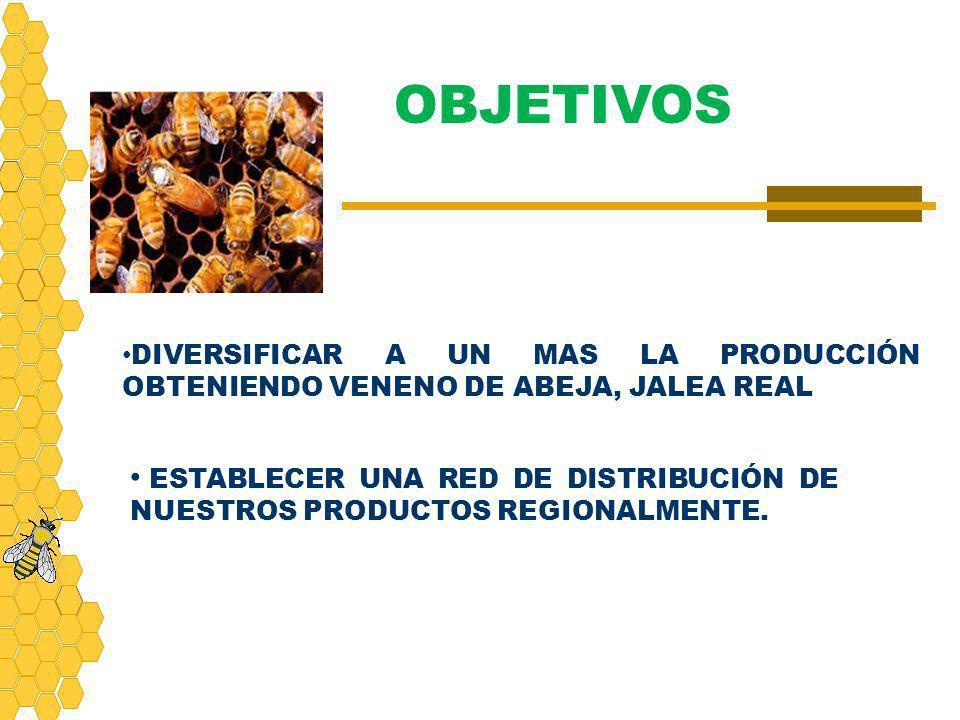 OBJETIVOS DIVERSIFICAR A UN MAS LA PRODUCCIÓN OBTENIENDO VENENO DE ABEJA, JALEA REAL.