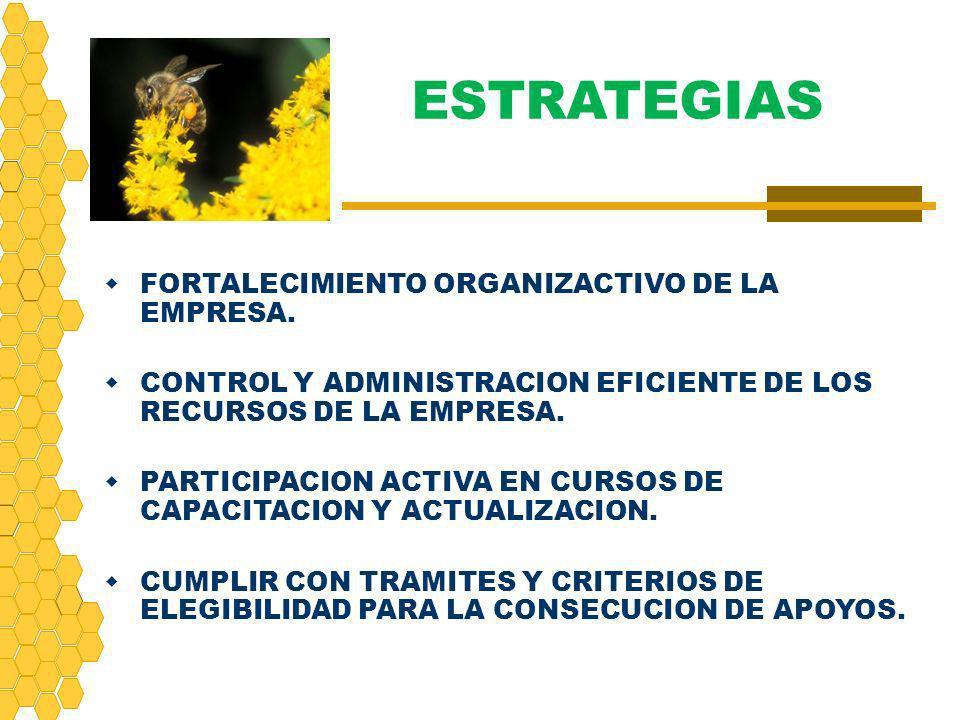 ESTRATEGIAS FORTALECIMIENTO ORGANIZACTIVO DE LA EMPRESA.
