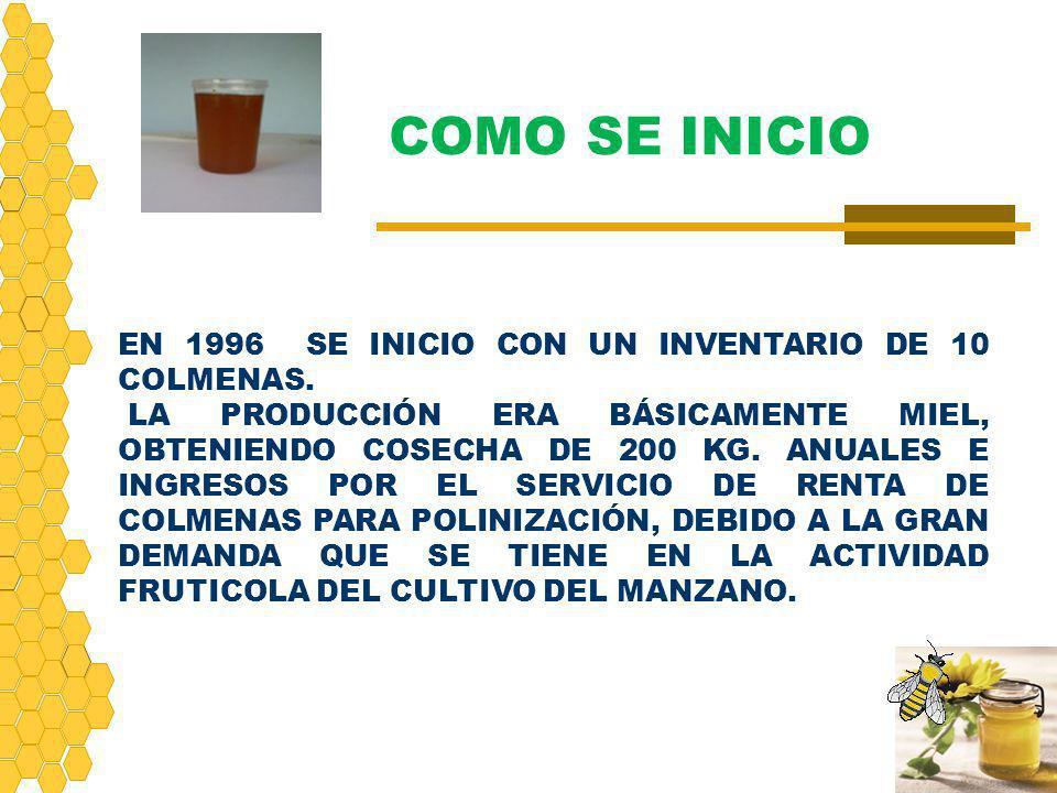 COMO SE INICIO EN 1996 SE INICIO CON UN INVENTARIO DE 10 COLMENAS.