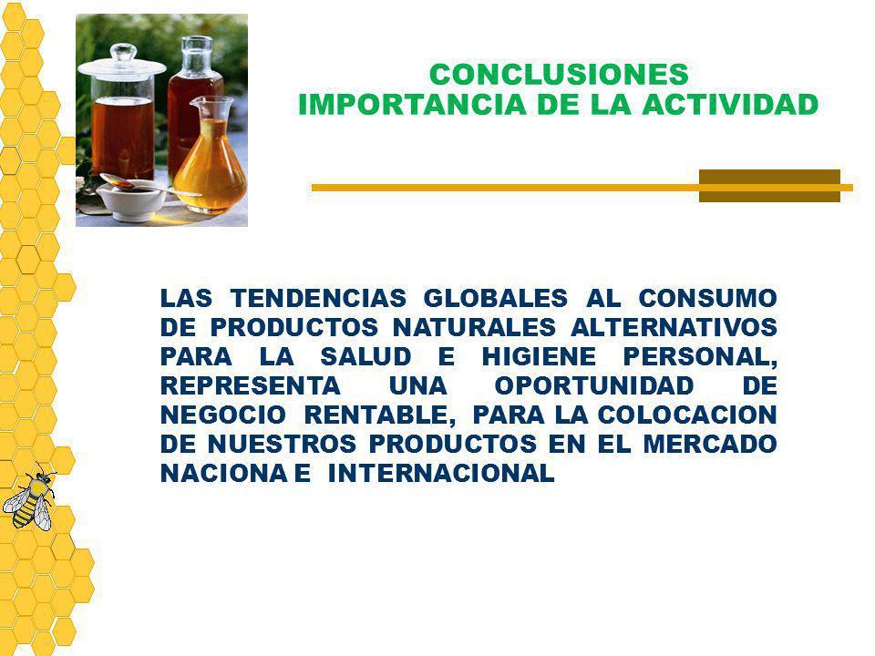 CONCLUSIONES IMPORTANCIA DE LA ACTIVIDAD