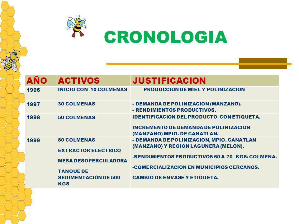 CRONOLOGIA AÑO ACTIVOS JUSTIFICACION 1996 1997 1998 1999