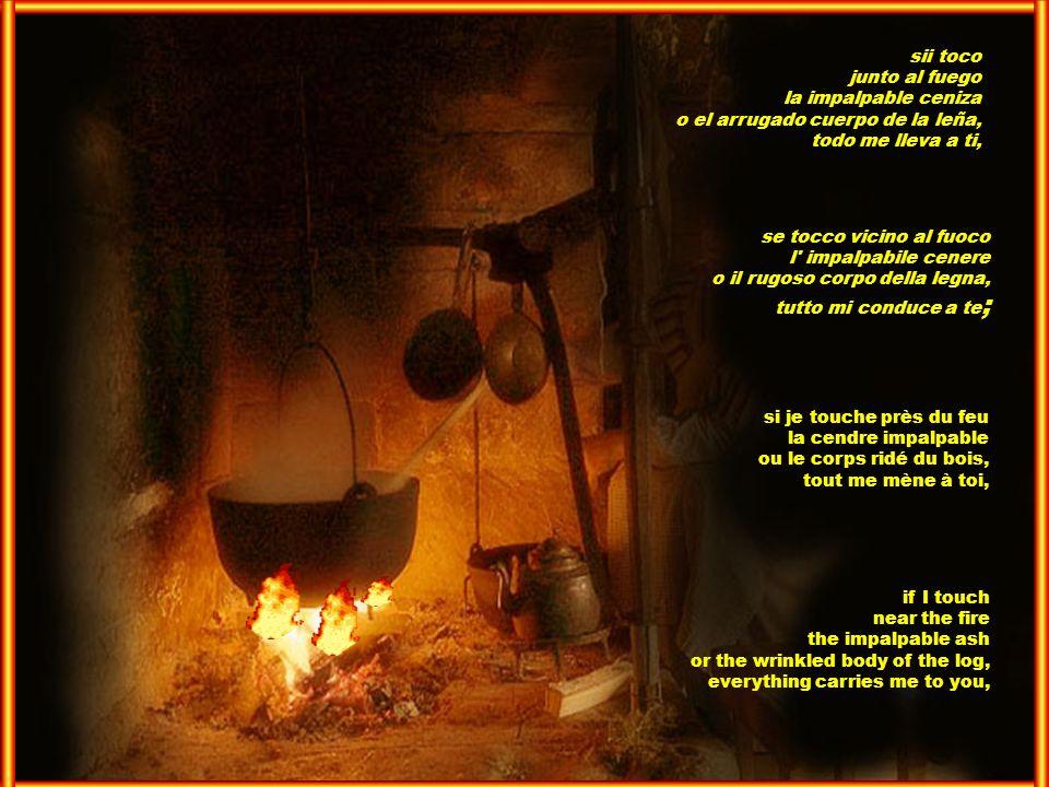 sii toco junto al fuego. la impalpable ceniza. o el arrugado cuerpo de la leña, todo me lleva a ti,