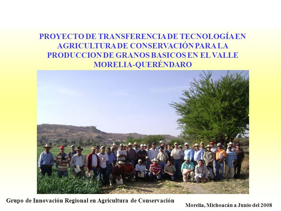 PROYECTO DE TRANSFERENCIA DE TECNOLOGÍA EN AGRICULTURA DE CONSERVACIÓN PARA LA PRODUCCION DE GRANOS BASICOS EN EL VALLE MORELIA-QUERÉNDARO